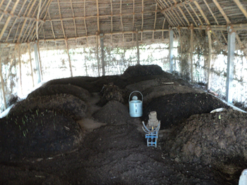 Community Vermicompost Unit in Alangadu village