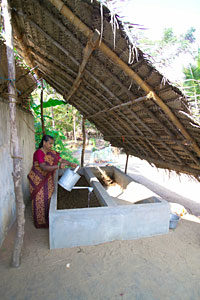 A woman watering the vermicompost pit at her backyard. Vermicompost serves as a good organic manure